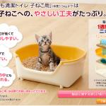 仔猫のトイレ