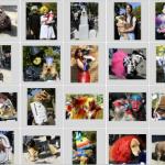 仮装した犬(AFPのHPより)
