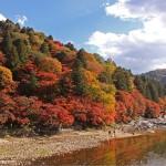 香嵐渓の紅葉です。